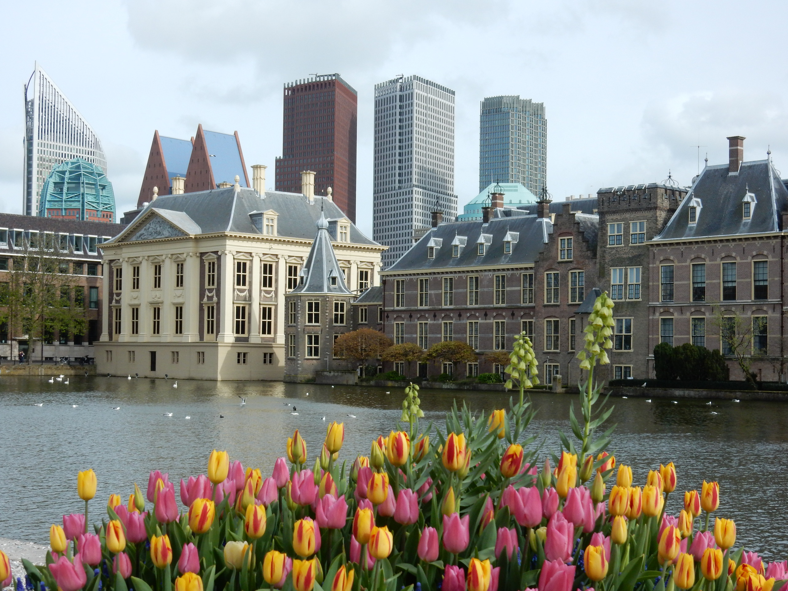 Guided tour The Hague 2